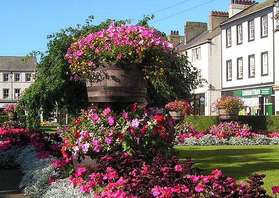 Flower Basket Whitehaven Uk : Whitehaven in bloom